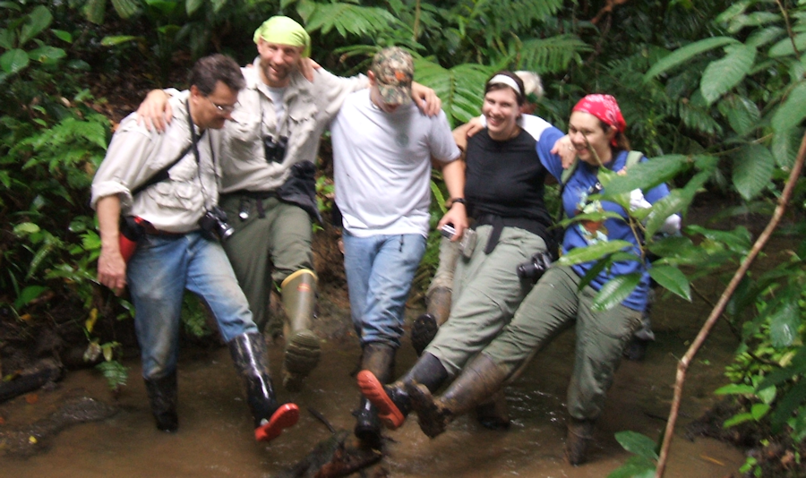 Wet and Wild in the Rain Forest Climbing